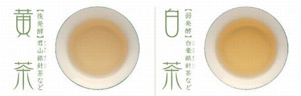 白茶 黄茶