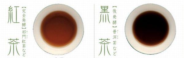 黒茶 紅茶